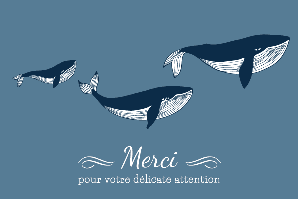 carte de remerciement baleine
