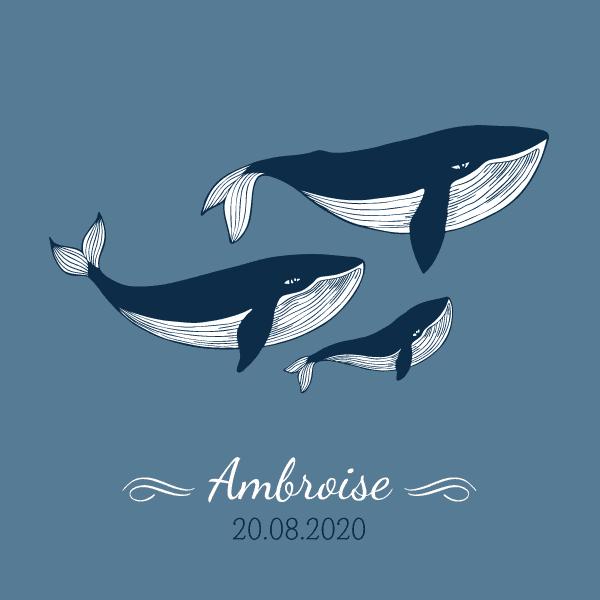 faire part naissance original baleine, faire part naissance baleine