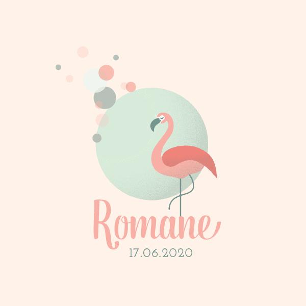 faire part naissance flamand rose, original, fille, graphique