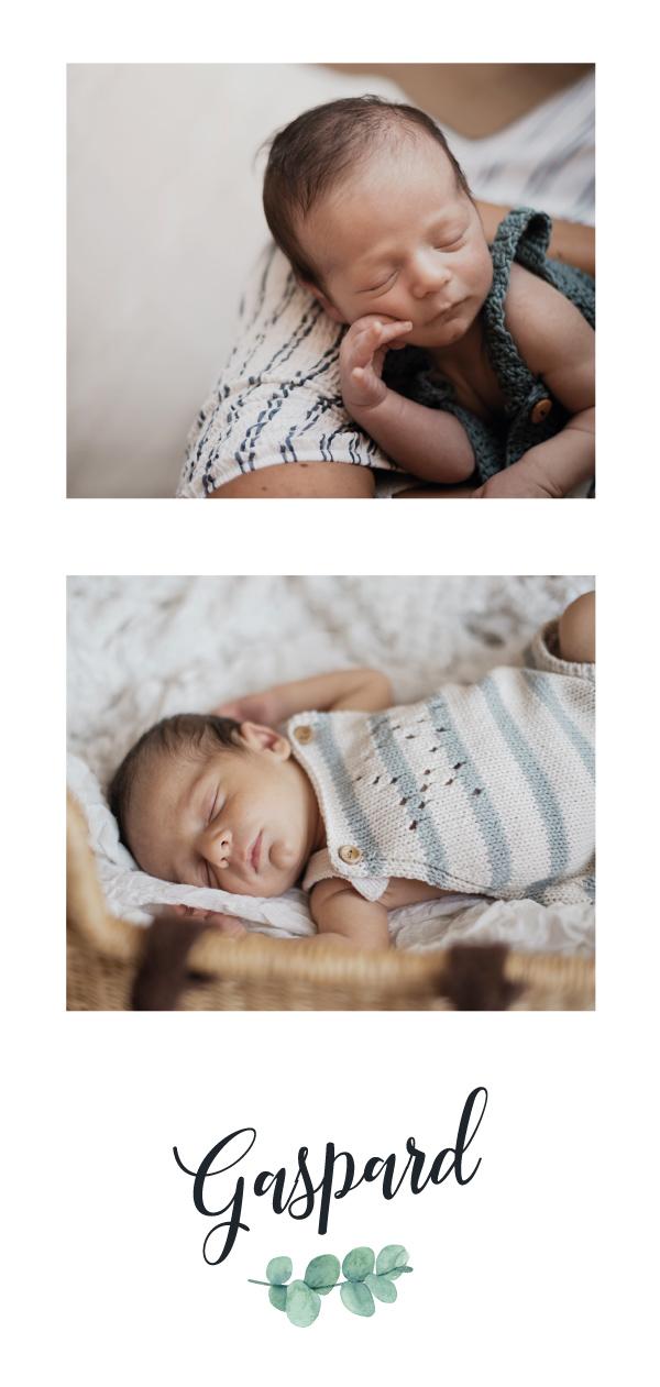 faire part naissance moderne avec photo et eucalyptus