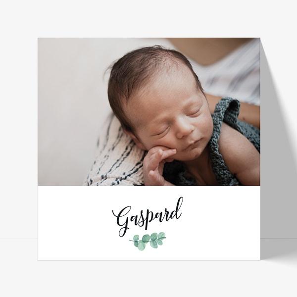 faire-part chic avec photo bébé et branche eucalyptus